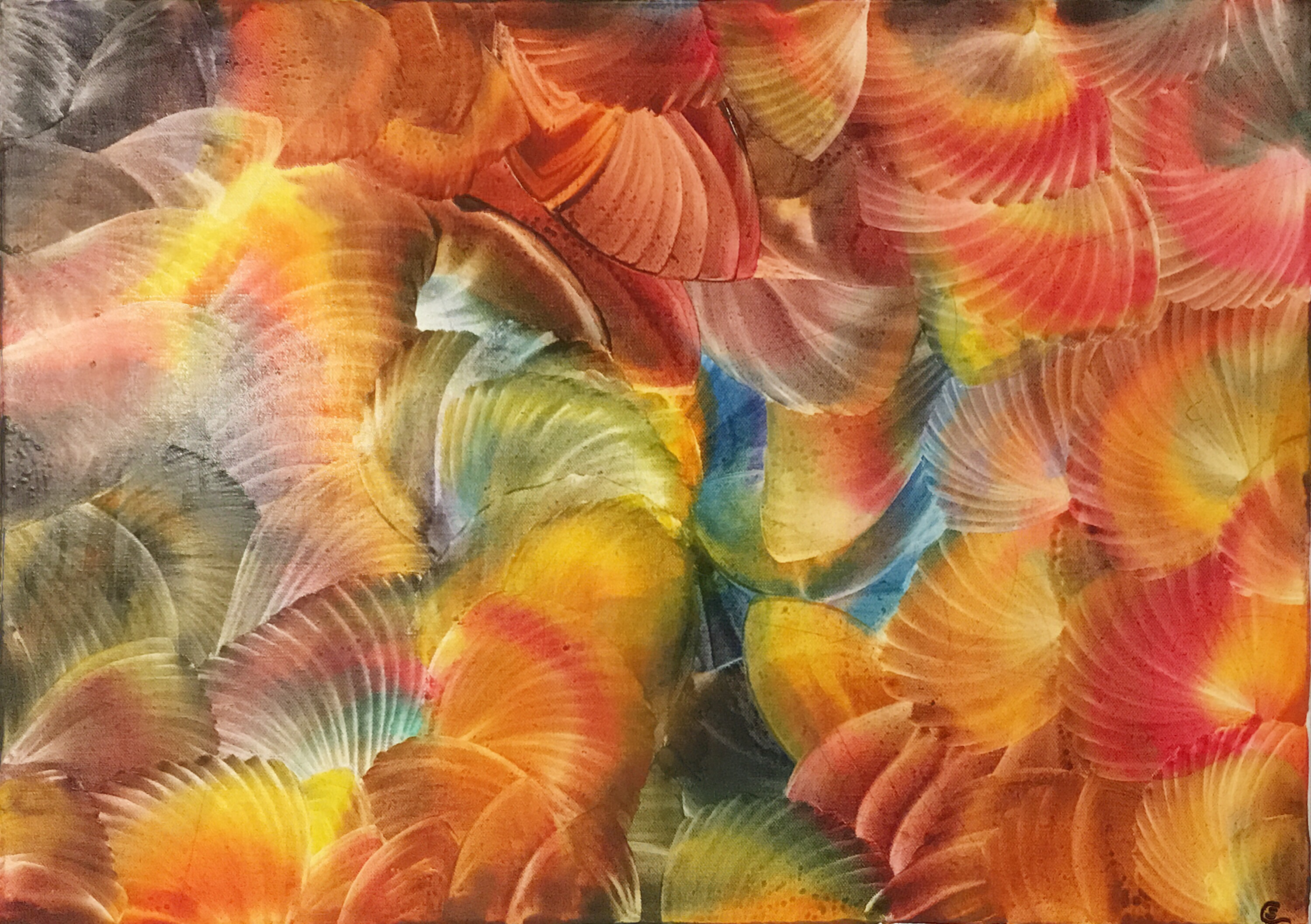Jacobsmuscheln, scallops, encaustic, 50x70 cm, canvas
